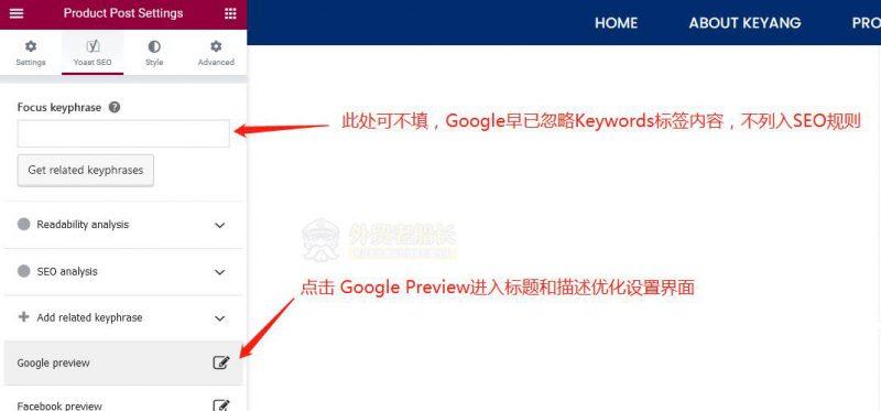 12-Elementor设置Google-Preview